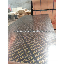 1220X2440X12mm álamo núcleo de alta calidad de película de madera contrachapada