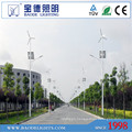 8m Pole 50W LED Solar Wind Turbine Street Light (BDTYN850-w)