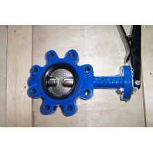 Two Shaft Lug Type Butterfly Valve