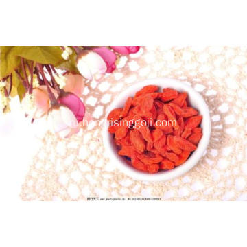 Top quality lycium wolfberry goji 2018