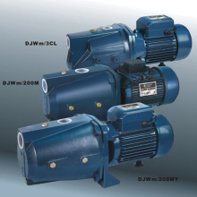 Self-Priming Jet Pumps with CE and UL (DJWM Series)