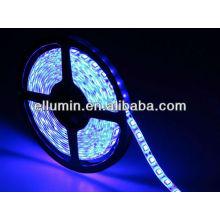 bule color 14.4w/m 10m 5050 smd led strip light dc12v