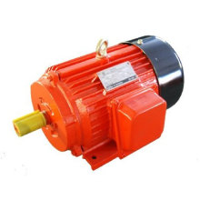 415V Y Three Phase Electric Motors