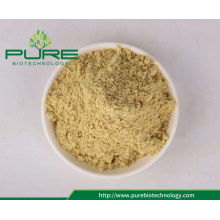 Wholesales Certified Organic Ginger Root Powder