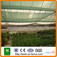 Dunkelgrünes Sonnenschutznetz
