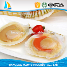frozen scallop meat half shell prices sea scallop bay scallop