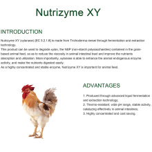 Sunson xylanase for feed additive