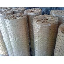 Best quality and factory for Hexagonal Wire Netting Galvanized Hexagonal Wire Mesh supply to Turkmenistan Supplier