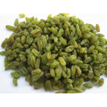 Food Grade Xinjiang Origin Green Raisin