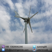 Fabriqué en Chine Sources d'énergie alternatives Générateur électrique Système hybride