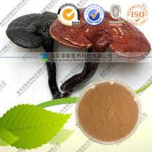 Natürliches Ganoderma Lucidum Polysaccharid 50%