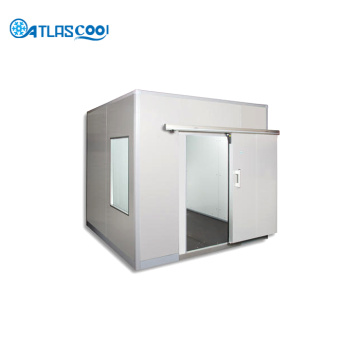 Modular cold room storage freezer