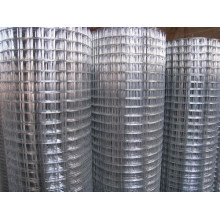 China Manufacture of Welded Wire Mesh
