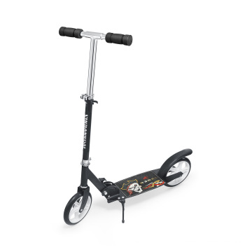 2017 Most Fashionable Adult Kick Scooter (BX-2M001-L)