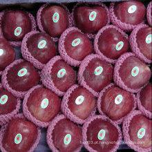 Vermelho chinês escuro Apple fresco