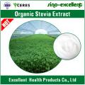 Hochwertige Bio-Stevia-Extrakt-Pulver-Süßstoffe