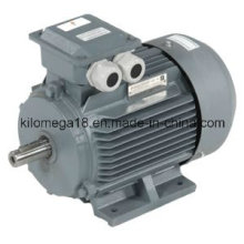 Industry Electric Motor Y Y2 Series 0.75kw-280kw