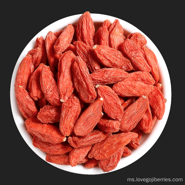 Goji Berries kering Ningxia 2018 New Harvest