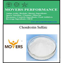 Suplemento nutricional de alta qualidade Sulfato de condroitina