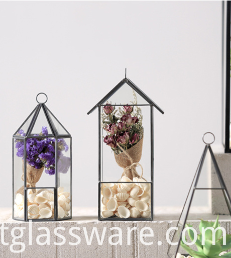 Clear Glass terrarium