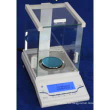0.001mg Electric Digital Analytical Balance Fa55