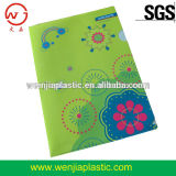 Foldable file clear plastic folder