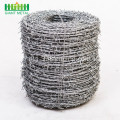 Sampel Kilang Hot Dipped Galvanized Barbed Wire