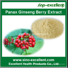 Panax Ginseng Berry Extract 80% Ginsenosides