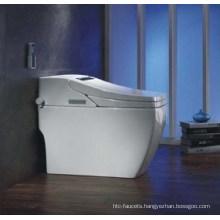 Luxury PP/Ceramic Boday Intelligent Toilet (W1506)