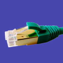 Golden Shielding Cat6A Patch Cord