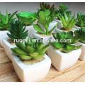 Alta qualidade por atacado plantas artificiais suculentas