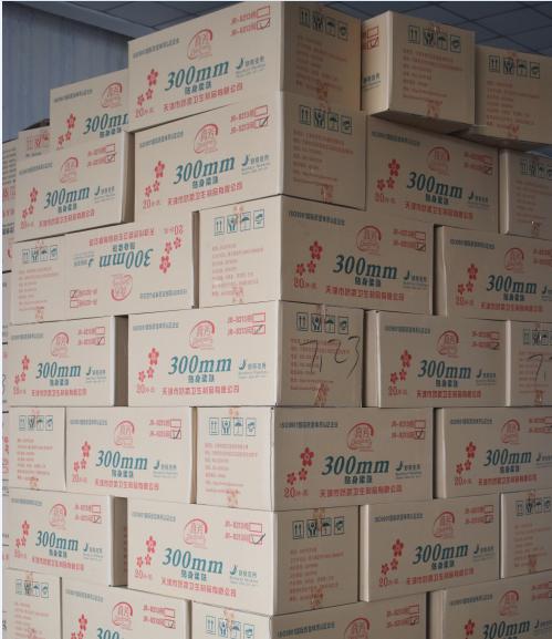 carton pack sanitary napkins
