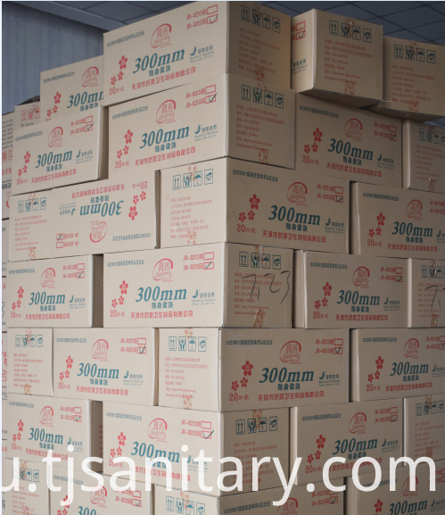 carton pack sanitary napkins