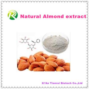 100% poudre d'extrait d'amande naturelle de haute qualité