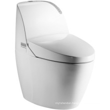 High Quality Ceramic Intelligent Toilet (JN30801)