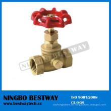 Горячие продажи Латунь котла дренажный клапан с хорошим качеством (БВ-С25)
