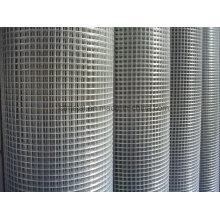 "Galvanized Welded Wire Mesh of 1/4"" To2"""