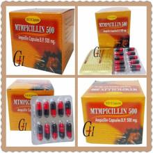 Antibiotics Ampicillin Capsules