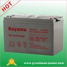 Batería de gel 100AMP 12V