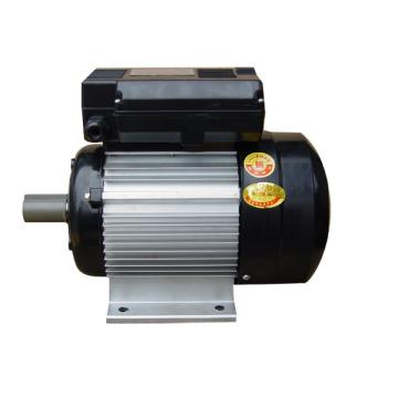 Motor électrique asynchrone à condensateur à deux valeurs de la série Yl (0,37kw)