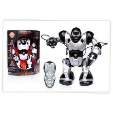 Weisheit Spielzeug Intelligent Roboter Spielzeug RC Roboter