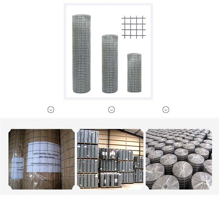 1/4 Inch Welded Wire Mesh