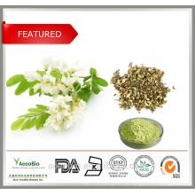 100% Extrato de Ervas Naturais Quercetina 98% Sophora Japonica Flor Sophora flavescens Ait