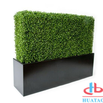 Conversão artificial do Boxwood da planta da planta decorativa da parede da grama