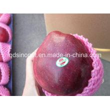 Super Huaniu Apple (bom gosto)