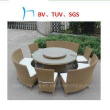 Table de loisirs en plein air de meubles de salle à manger de meubles de jardin (LS-170)
