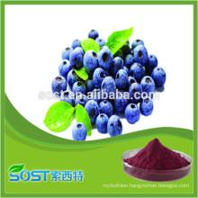 Chinese Organic Freeze Dried Fruit Powder