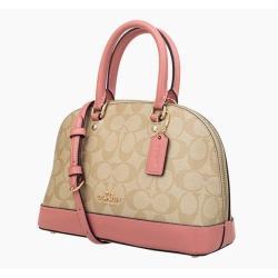 Pre Production Inspection handbag
