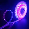 Цифровой светодиодный светодиодный фонарь WS2812B 60 светодиодов