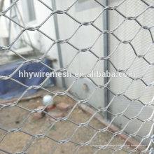 Engranzamento animal de aço inoxidável do engranzamento de fio malha aviary malha malha corda zoo